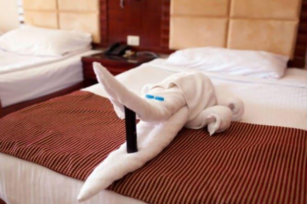 2020 05 28 14h39 55 - ホテル業界はコロナで大変!!ルームメイクをしながら今後の生き方を考えた
